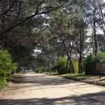 El barrio de la cabaña pura tranquilidad en Monte Hermoso