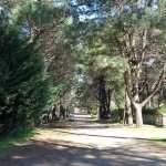 Paseo barrio cabañ